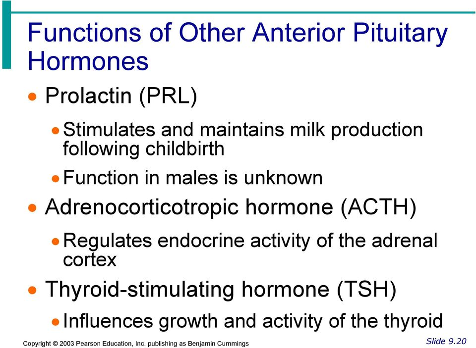 Adrenocorticotropic hormone (ACTH) Regulates endocrine activity of the adrenal