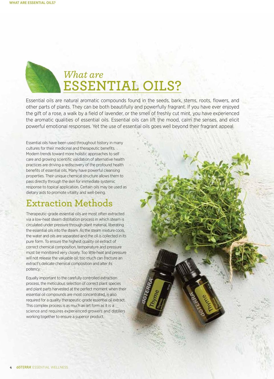Essential oils can lift the mood, calm the senses, and elicit powerful emotional responses. Yet the use of essential oils goes well beyond their fragrant appeal.