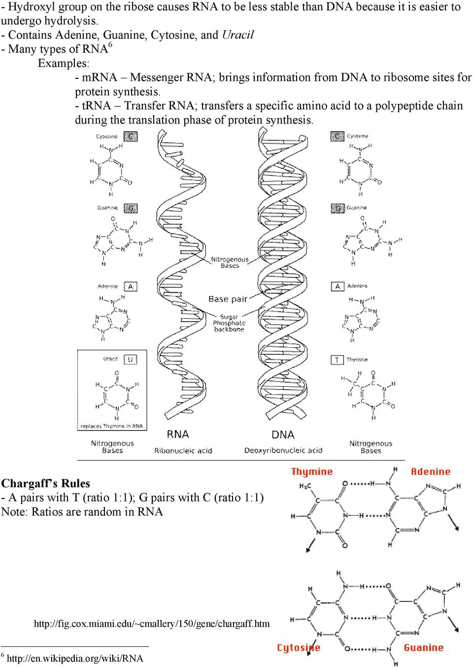 for protein synthesis. - trna Transfer RNA; transfers a specific amino acid to a polypeptide chain during the translation phase of protein synthesis.