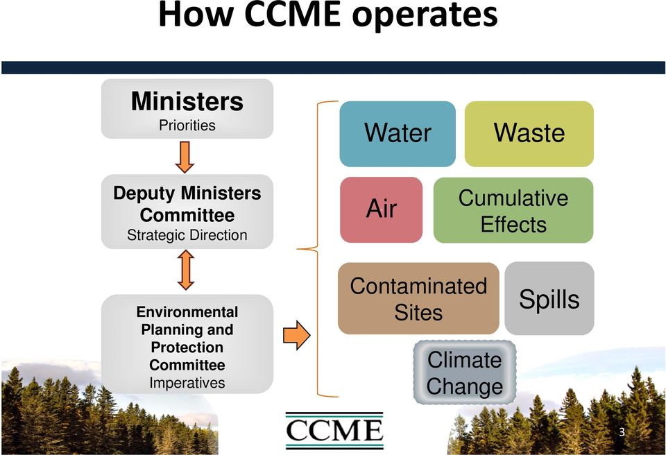 Cumulative Effects Environmental Planning and