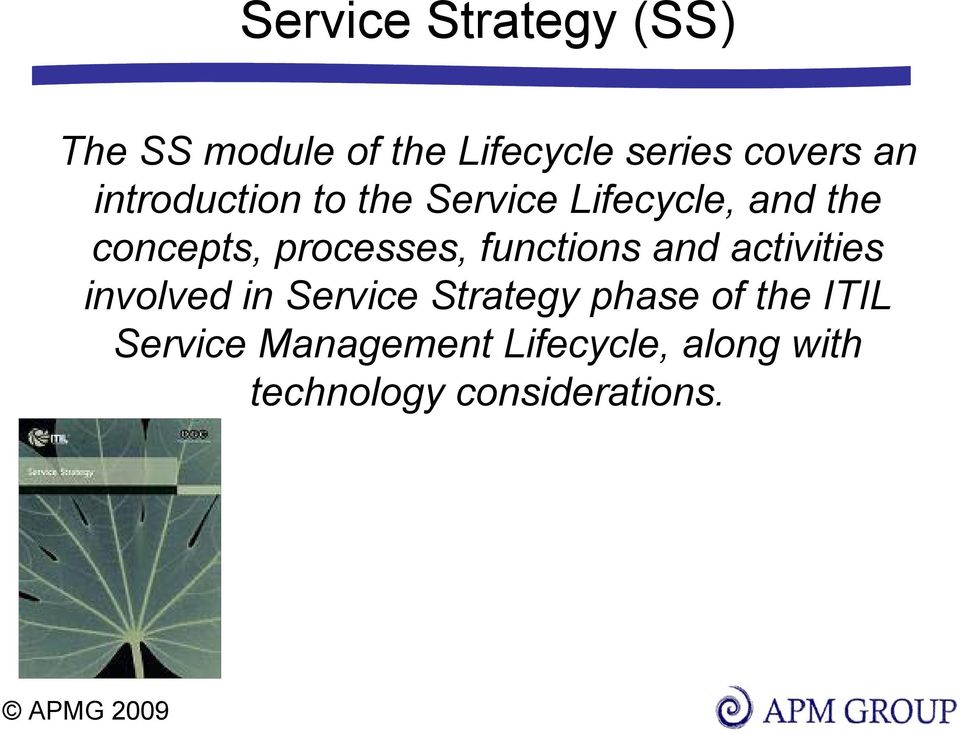 functions and activities involved in Service Strategy phase of the