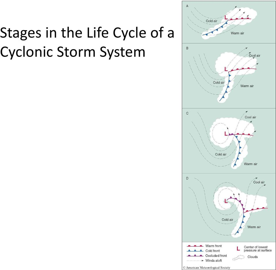 Cycle of a