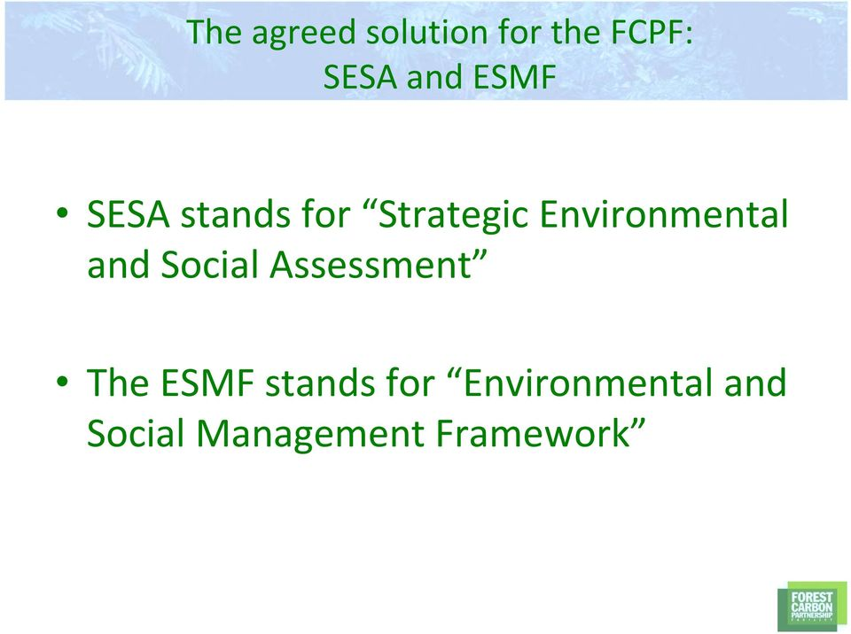 Environmental and Social Assessment The