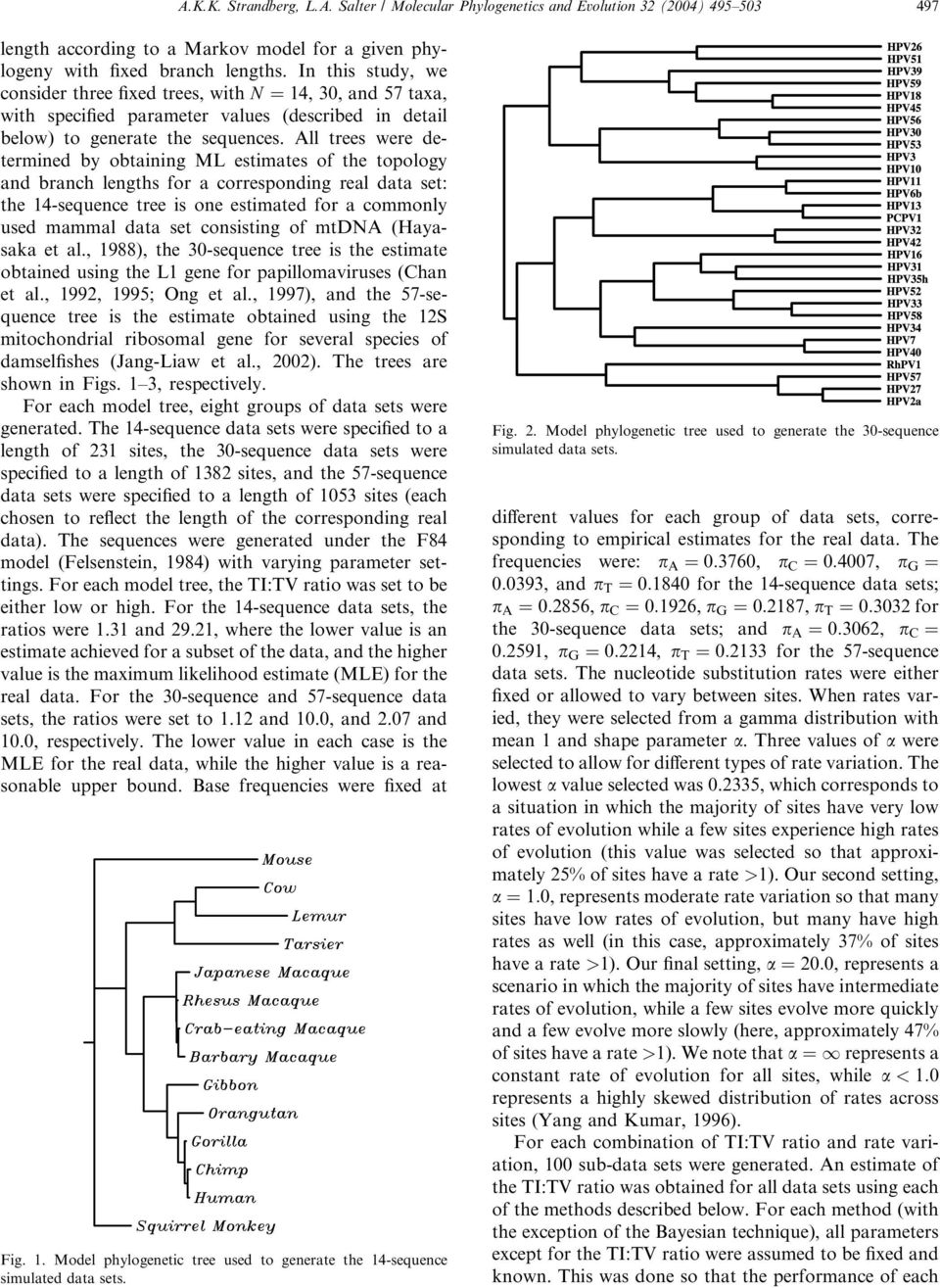 All trees were determined by obtaining ML estimates of the topology and branch lengths for a corresponding real data set: the 14-sequence tree is one estimated for a commonly used mammal data set