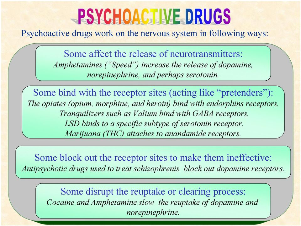 Tranquilizers such as Valium bind with GABA receptors. LSD binds to a specific subtype of serotonin receptor. Marijuana (THC) attaches to anandamide receptors.
