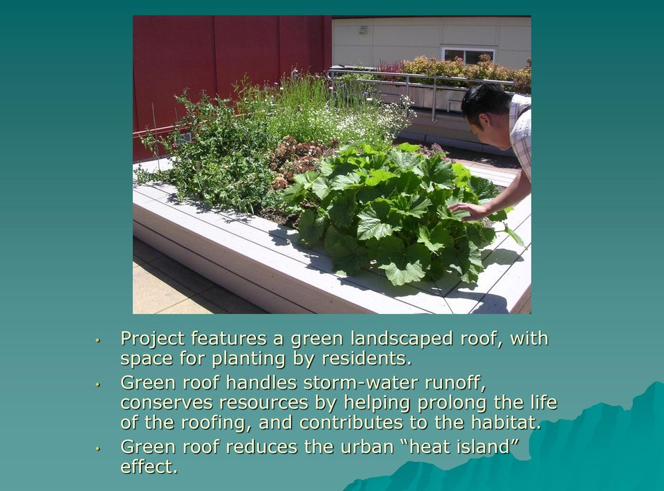 Green roof handles storm-water runoff, conserves resources by