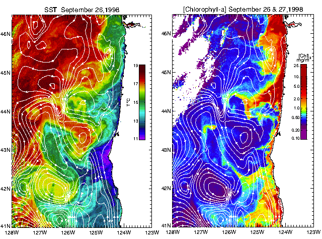 Surface Height, Temperature and Chlorophyll: 1 km SST: 26 Sept.