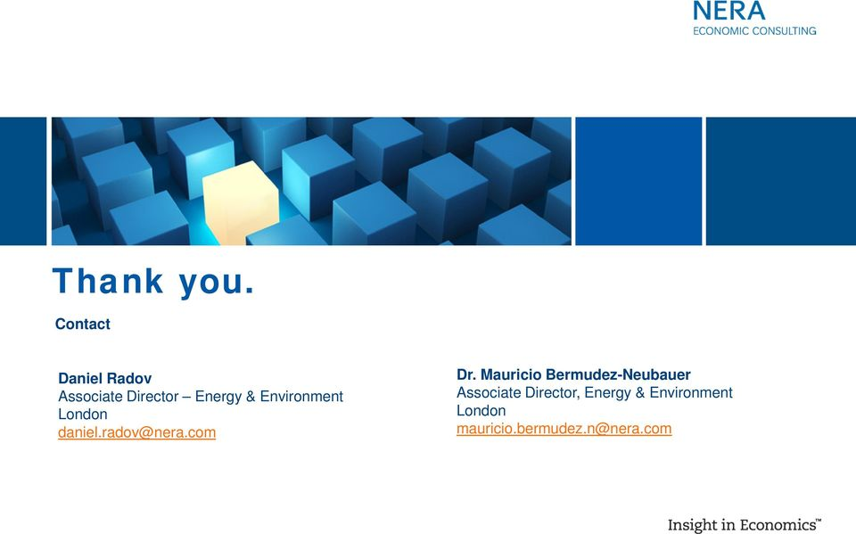 Environment London daniel.radov@nera.com Dr.