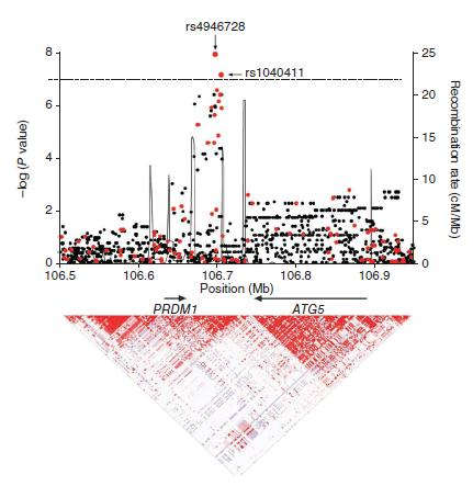 Identified a genetic profile for breast cancer following Hodgkin s