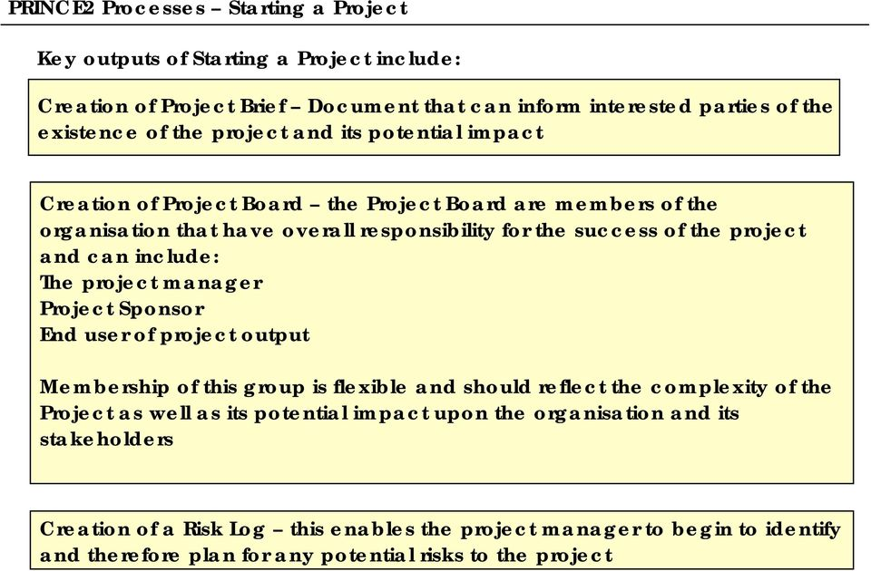 include: The project manager Project Sponsor End user of project output Membership of this group is flexible and should reflect the complexity of the Project as well as its