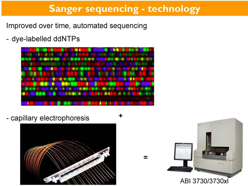 sequencing - dye-labelled ddntps -