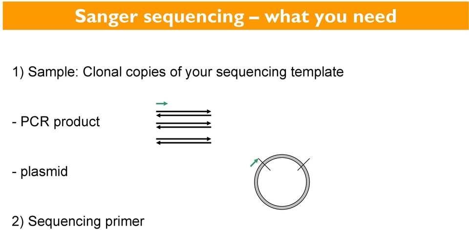 your sequencing template - PCR