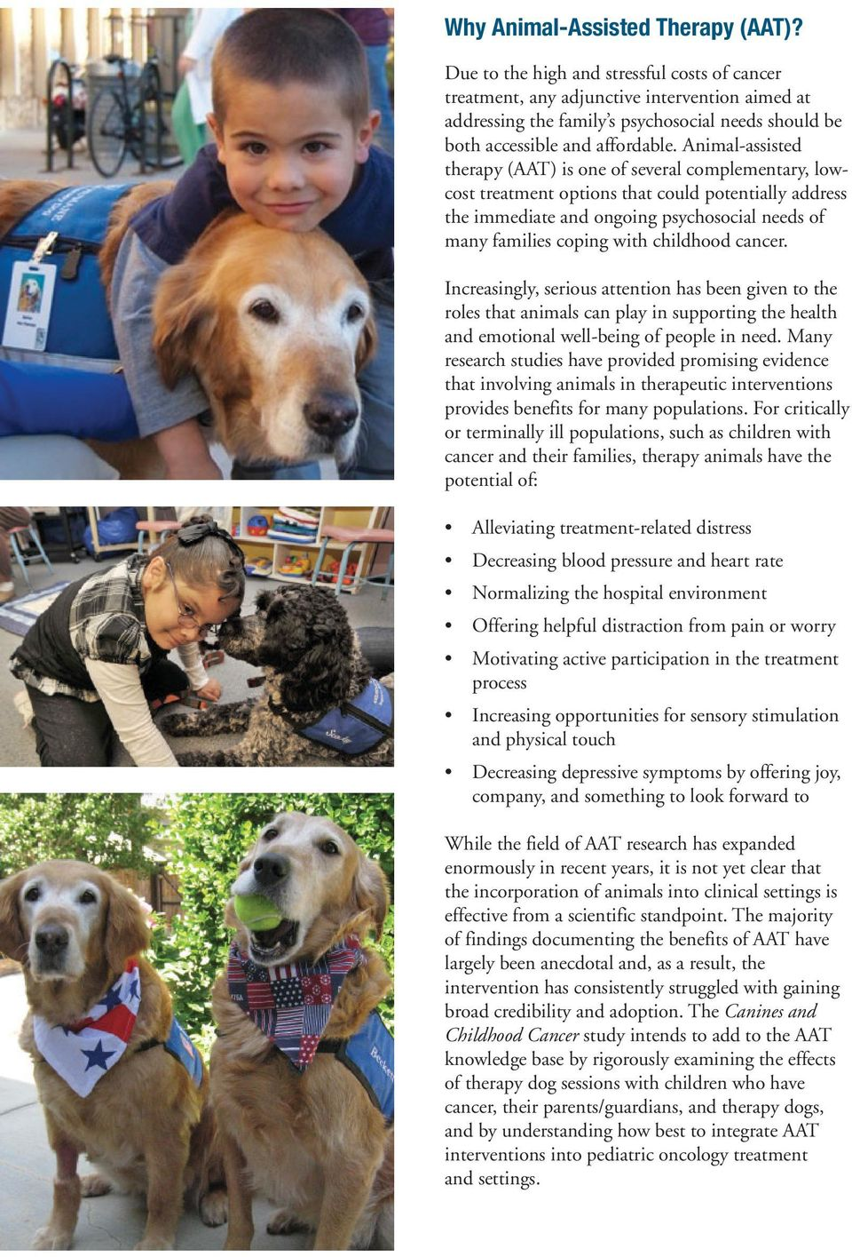 Animal-assisted therapy (AAT) is one of several complementary, lowcost treatment options that could potentially address the immediate and ongoing psychosocial needs of many families coping with