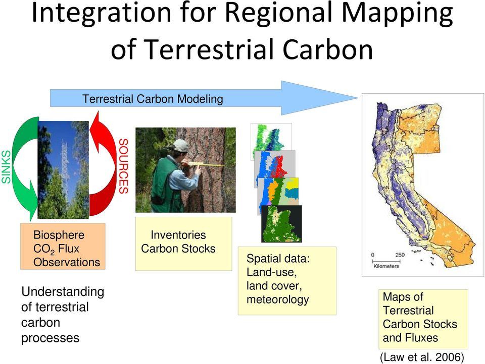 terrestrial carbon processes Inventories Carbon Stocks Spatial data: