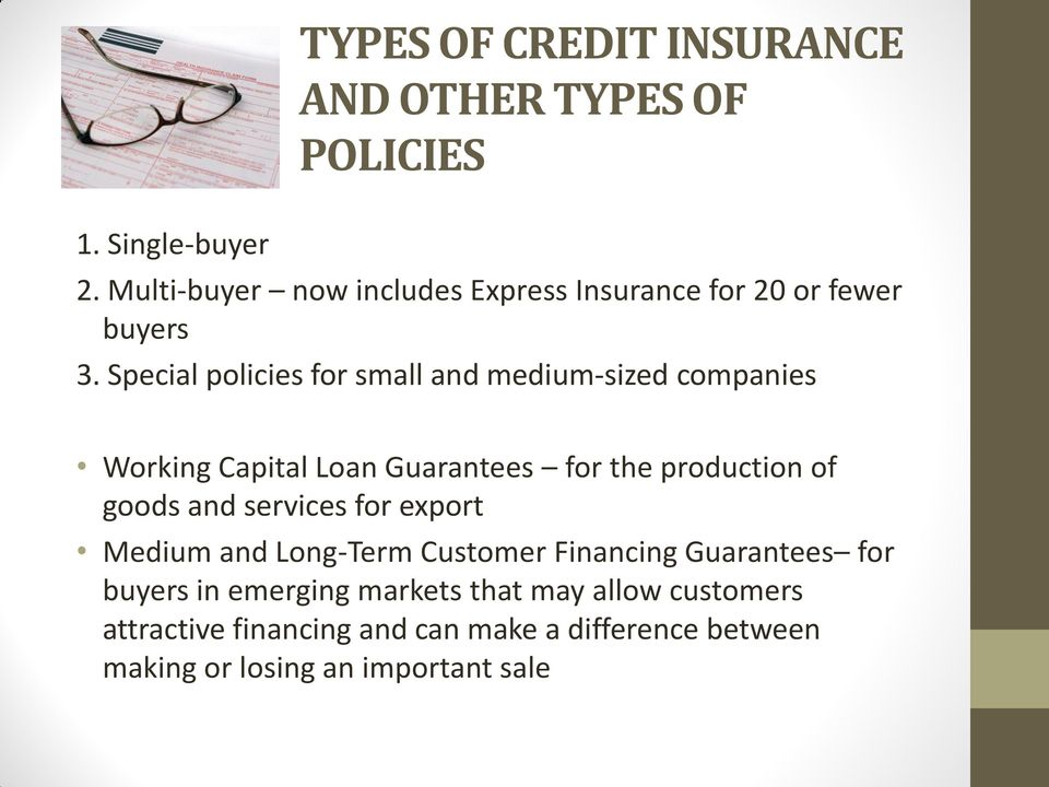 Special policies for small and medium-sized companies Working Capital Loan Guarantees for the production of goods and