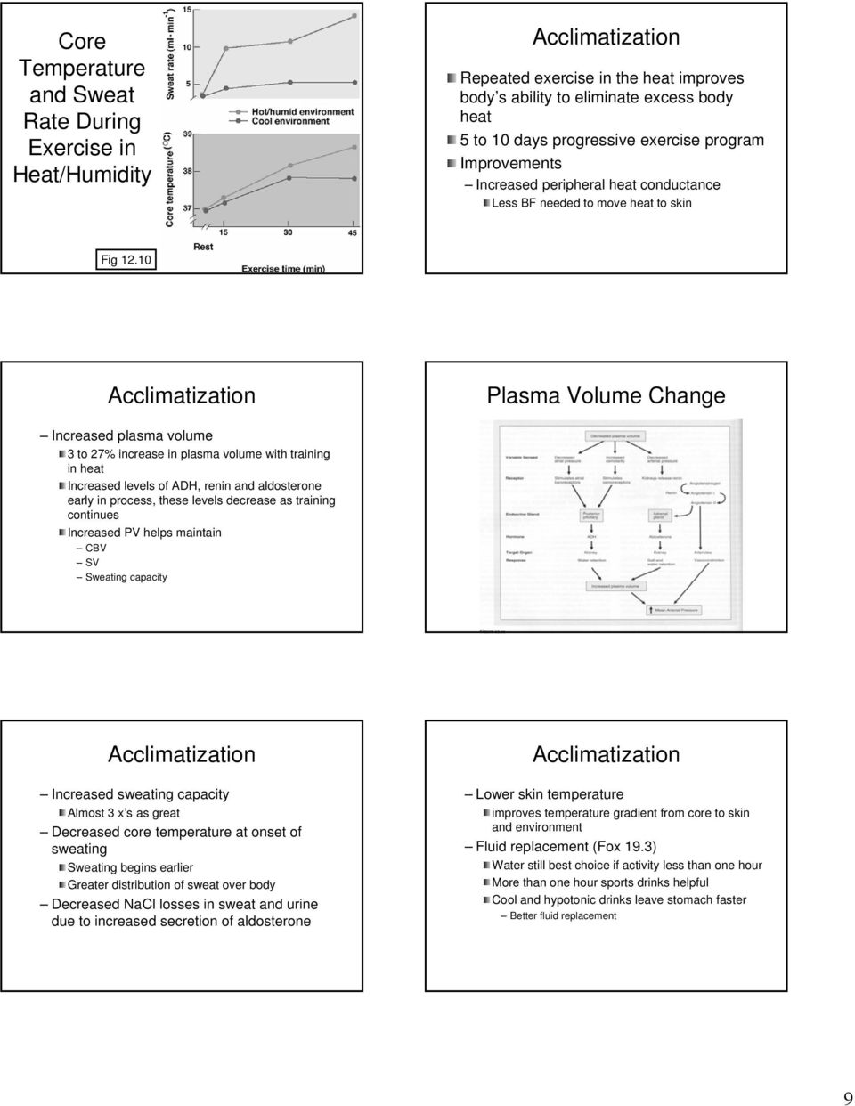10 Acclimatization Plasma Volume Change Increased plasma volume 3 to 27% increase in plasma volume with training in heat Increased levels of ADH, renin and aldosterone early in process, these levels