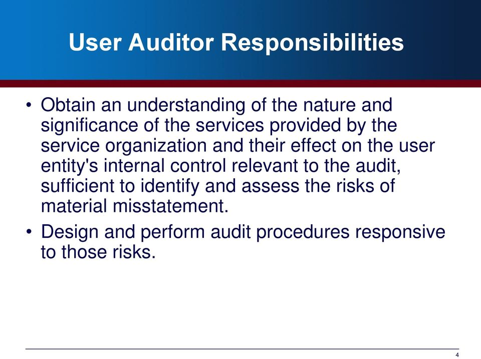 internal control relevant to the audit, sufficient to identify and assess the risks of
