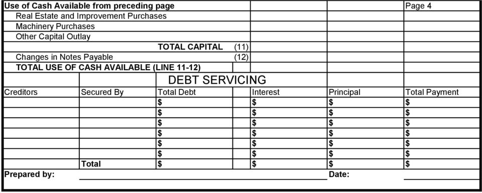 Notes Payable (12) TOTAL USE OF CASH AVAILABLE (LINE 11-12) DEBT SERVICING