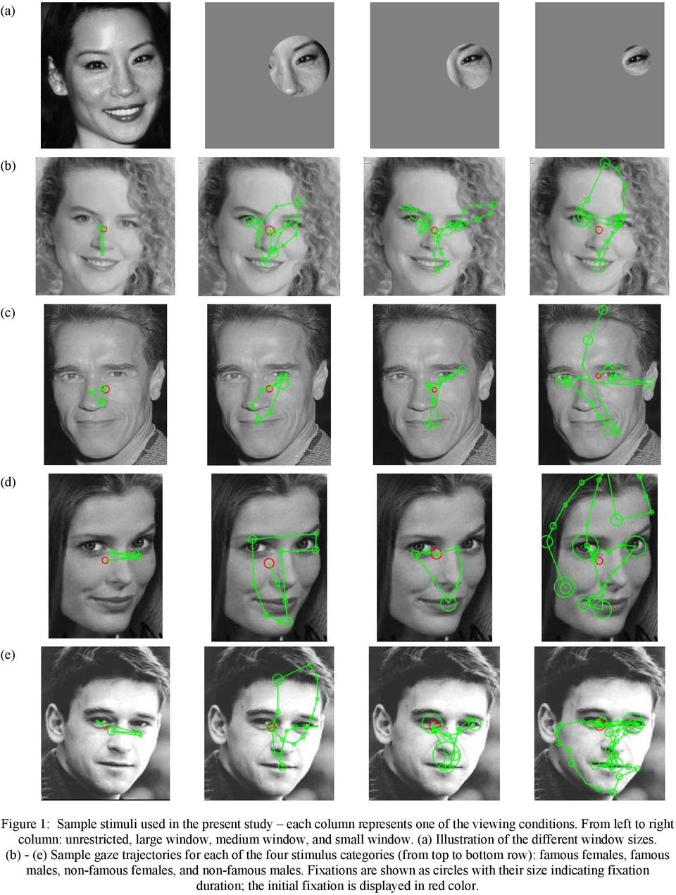 (b) - (e) Sample gaze trajectories for each of the four stimulus categories (from top to bottom row): famous females, famous males,