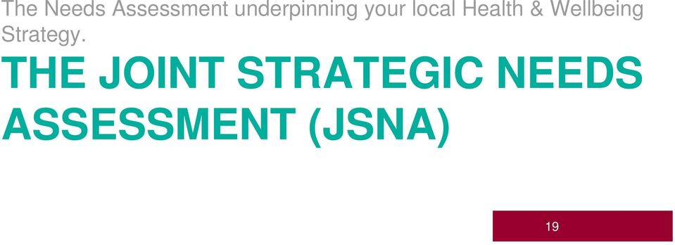THE JOINT STRATEGIC NEEDS ASSESSMENT