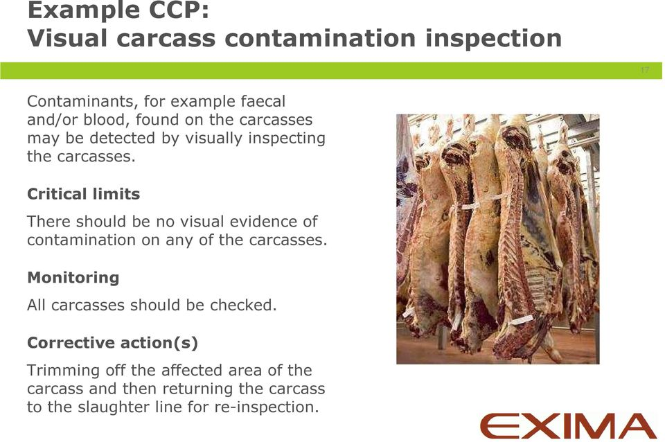 Critical limits There should be no visual evidence of contamination on any of the carcasses.