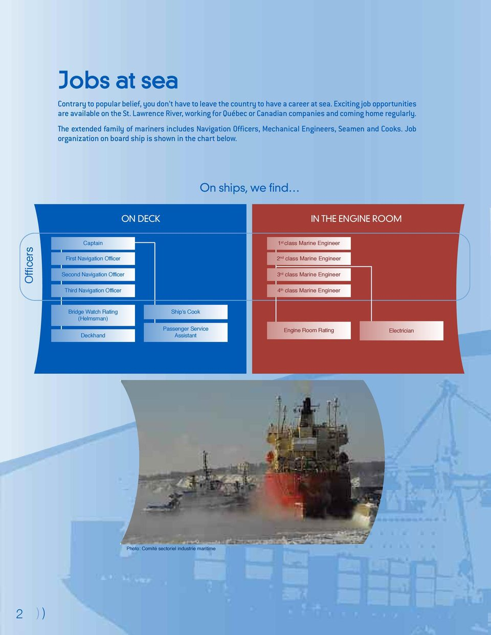 Job organization on board ship is shown in the chart below.