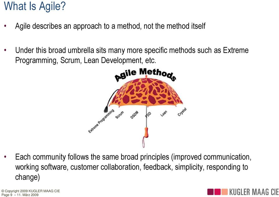 many more specific methods such as Extreme Programming, Scrum, Lean Development, etc.