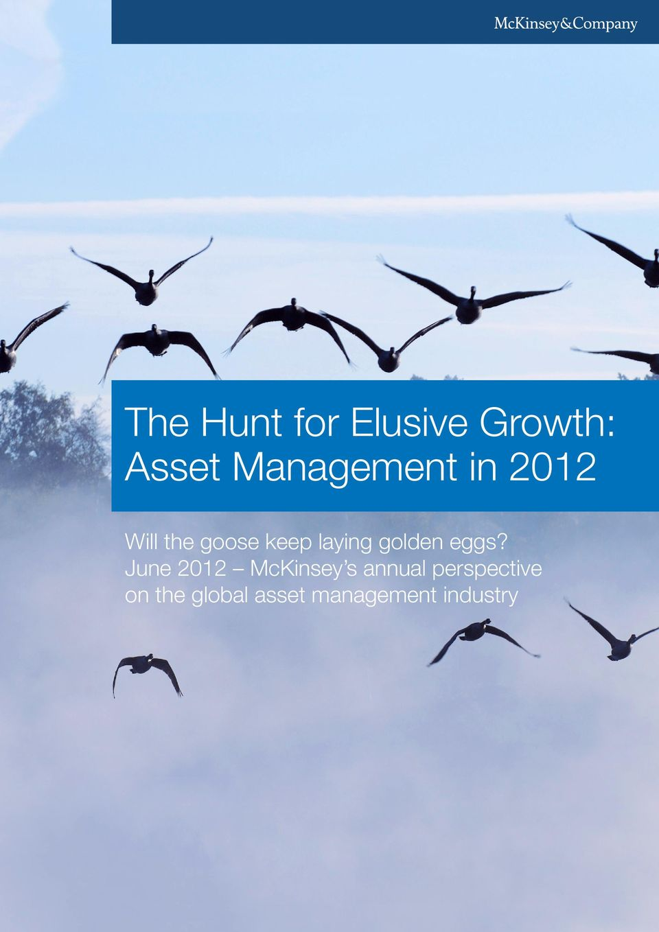 The Hunt for Elusive Growth: Asset Management in PDF
