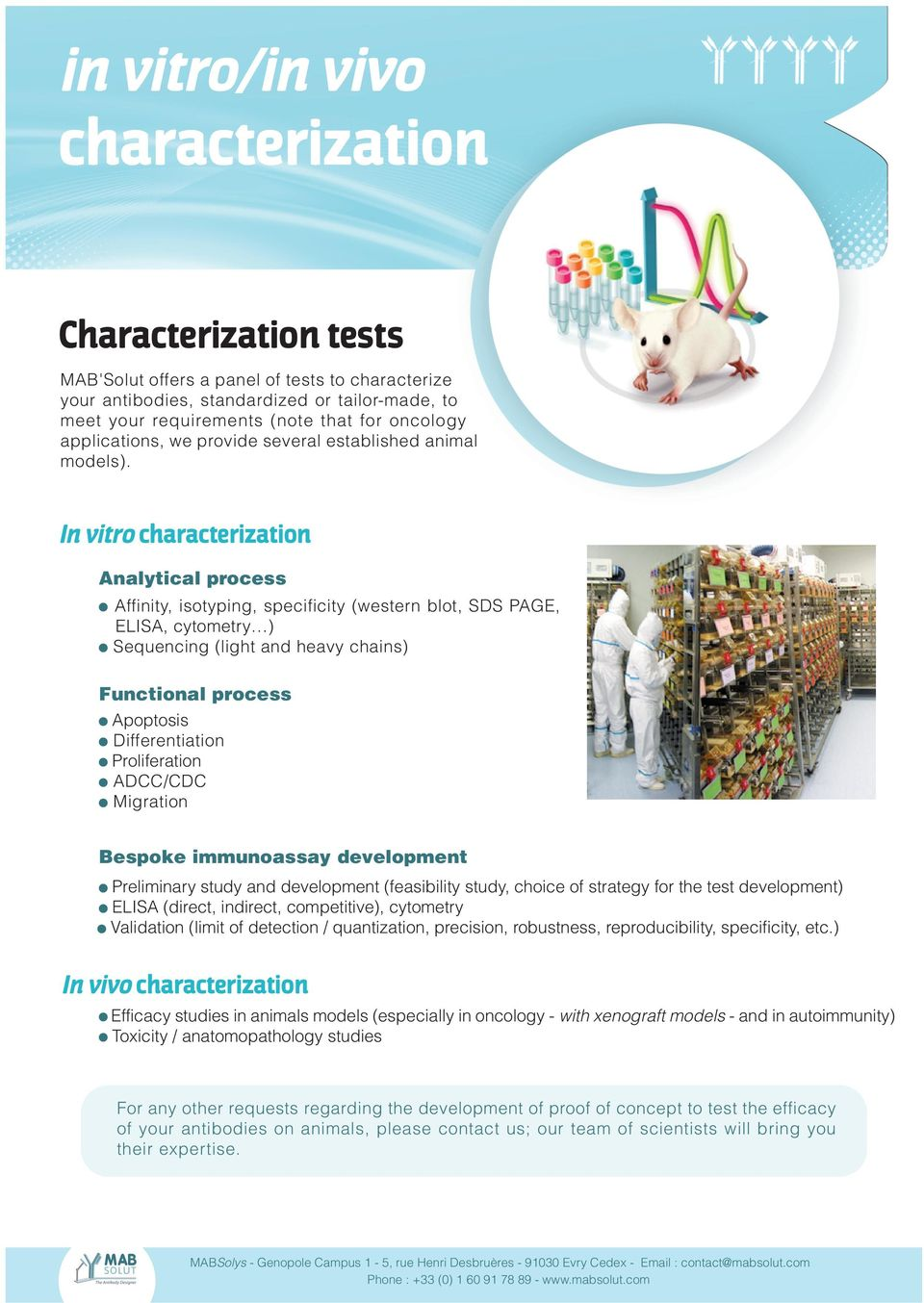 In vitro characterization Analytical process Affinity, isotyping, specificity (western blot, SDS PAGE, ELISA, cytometry ) Sequencing (light and heavy chains) Functional process Apoptosis