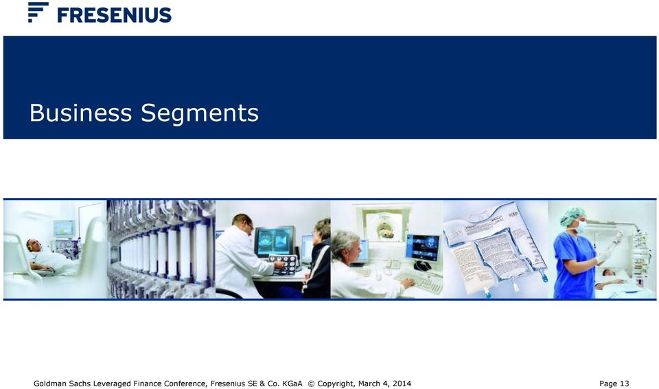 Conference, Fresenius SE & Co.