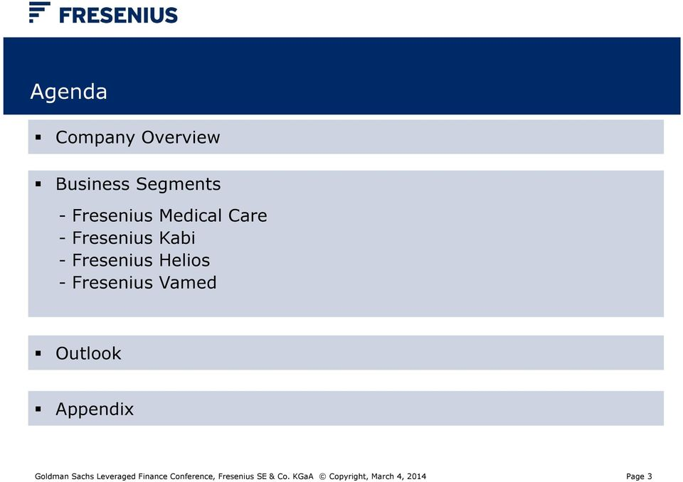 Fresenius Vamed Outlook Appendix Goldman Sachs Leveraged