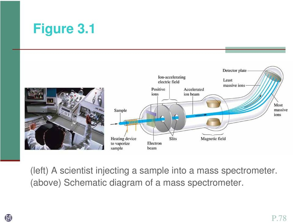 sample into a mass spectrometer.