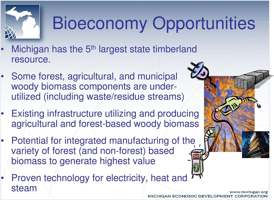 streams) Existing infrastructure utilizing and producing agricultural and forest-based woody biomass Potential for