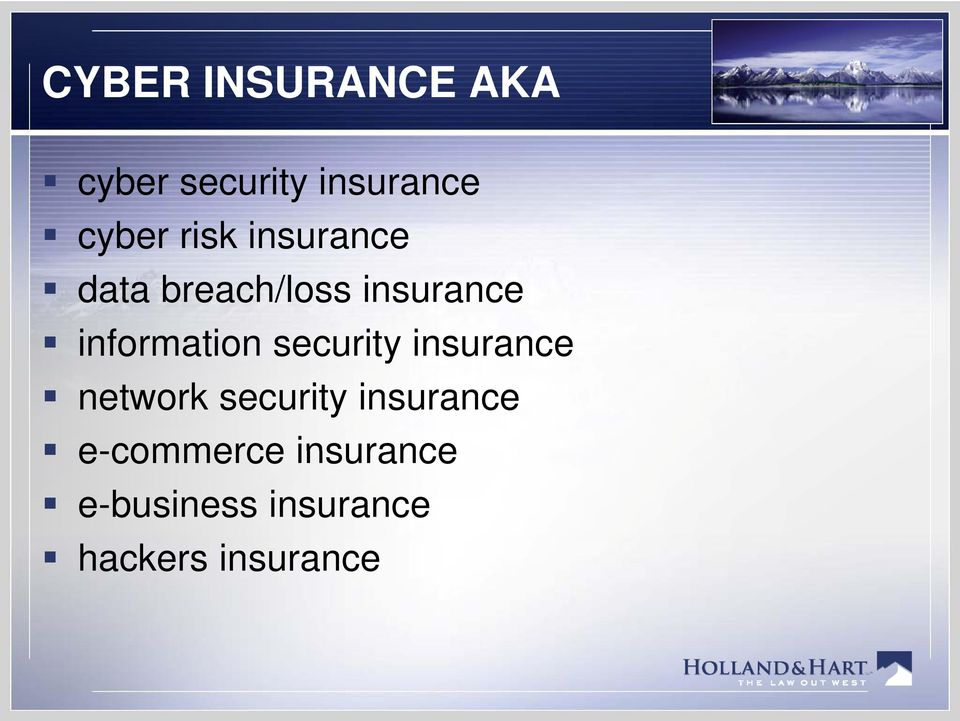 information security insurance network security