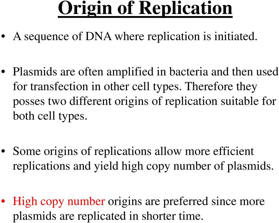 Therefore they posses two different origins of replication suitable for both cell types.