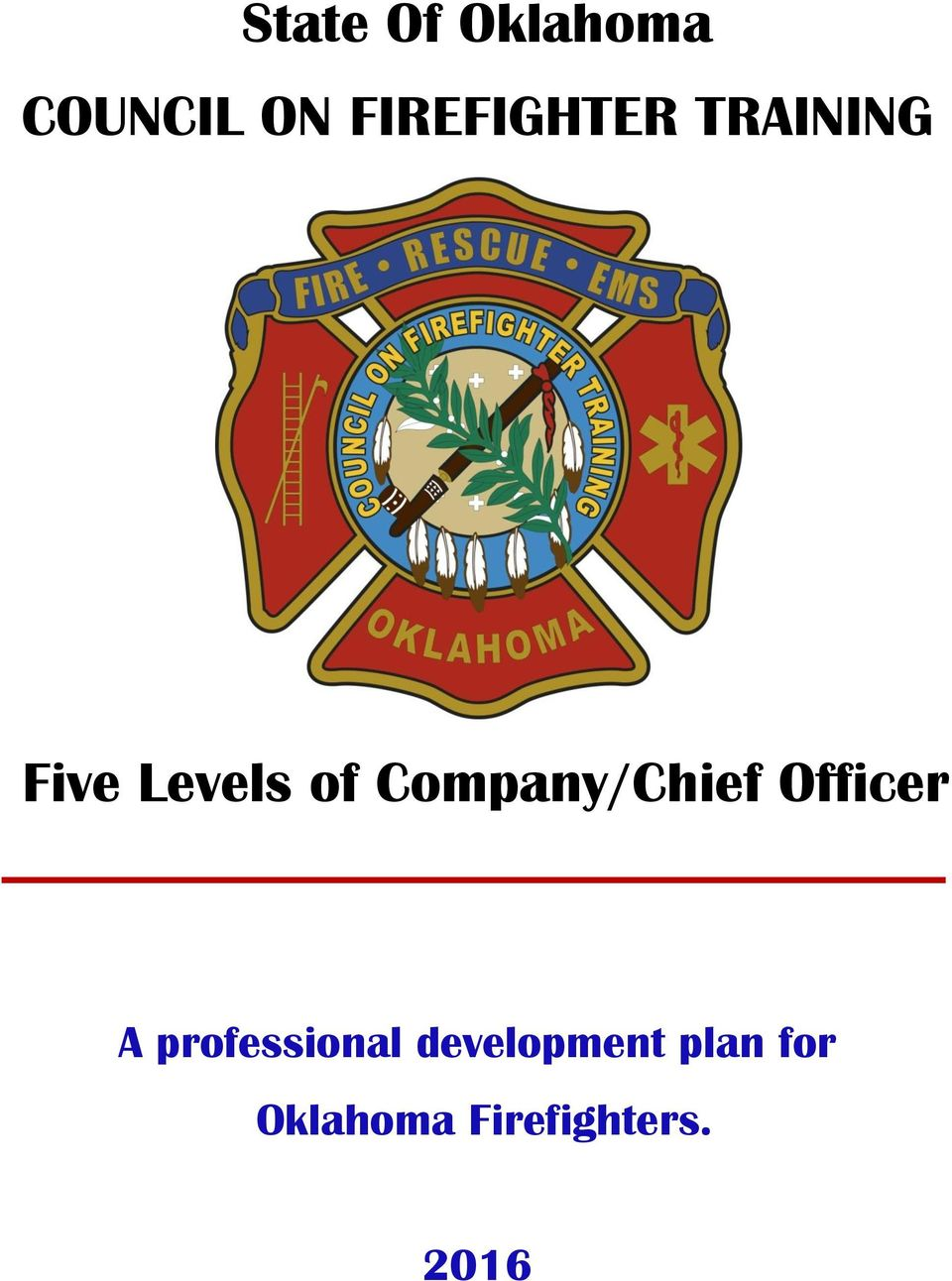 Company/Chief Officer A professional