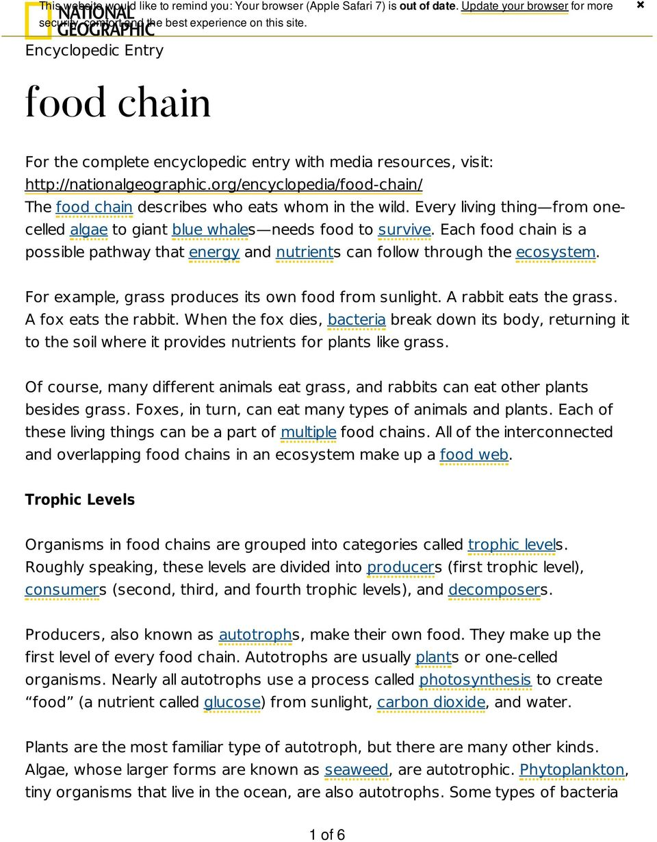 org/encyclopedia/food-chain/ The food chain describes who eats whom in the wild. Every living thing from onecelled algae to giant blue whales needs food to survive.