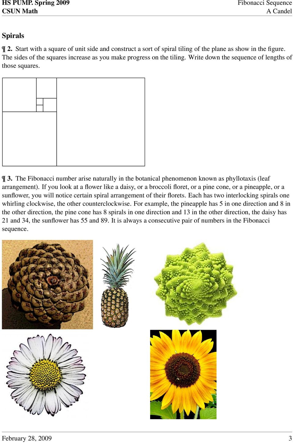 If you look at a flower like a daisy, or a broccoli floret, or a pine cone, or a pineapple, or a sunflower, you will notice certain spiral arrangement of their florets.