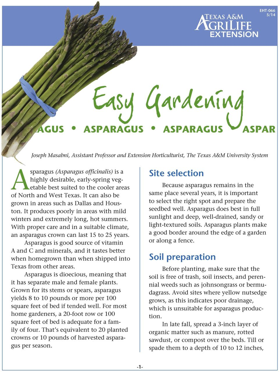It produces poorly in areas with mild winters and extremely long, hot summers. With proper care and in a suitable climate, an asparagus crown can last 15 to 25 years.