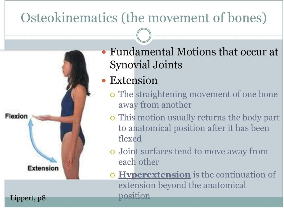 returns the body part to anatomical position after it has been flexed Joint surfaces tend to
