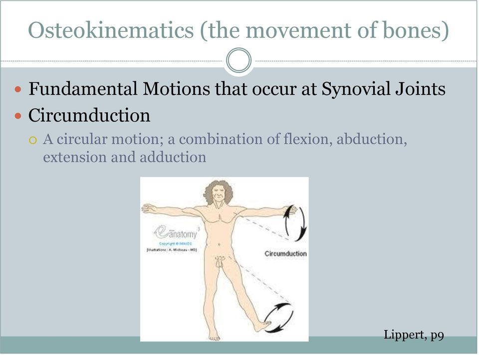 Joints Circumduction A circular motion; a