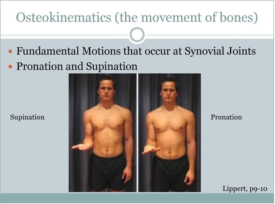 at Synovial Joints Pronation and