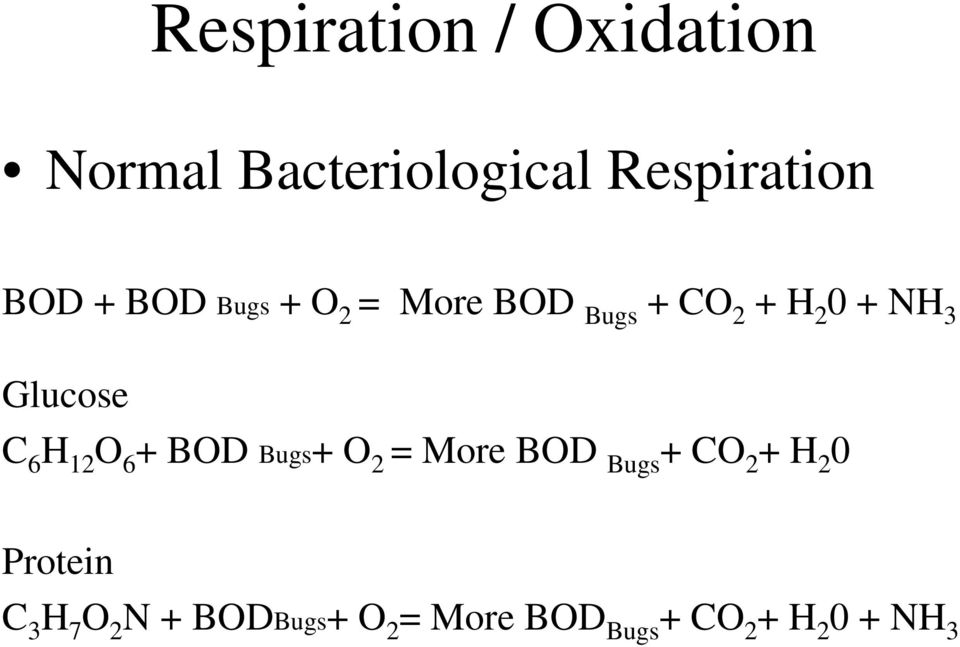 H 12 O 6 + BOD Bugs+ O 2 = More BOD Bugs + CO 2 + H 2 0 Protein