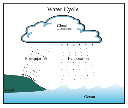 3. Draw arrows to indicate the path of water in the picture below. Label evaporation, condensation and precipitation on this drawing of the Earth s cycle.