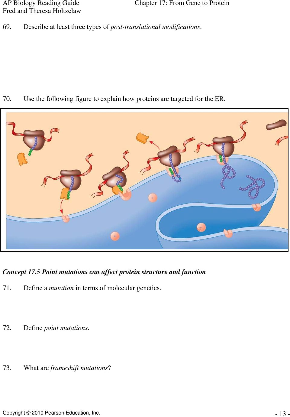 5 Point mutations can affect protein structure and function 71.