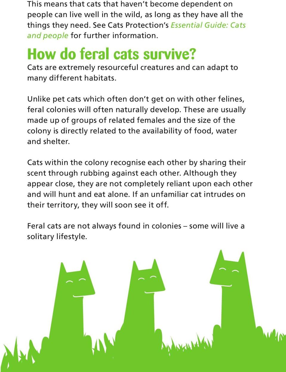 Unlike pet cats which often don t get on with other felines, feral colonies will often naturally develop.