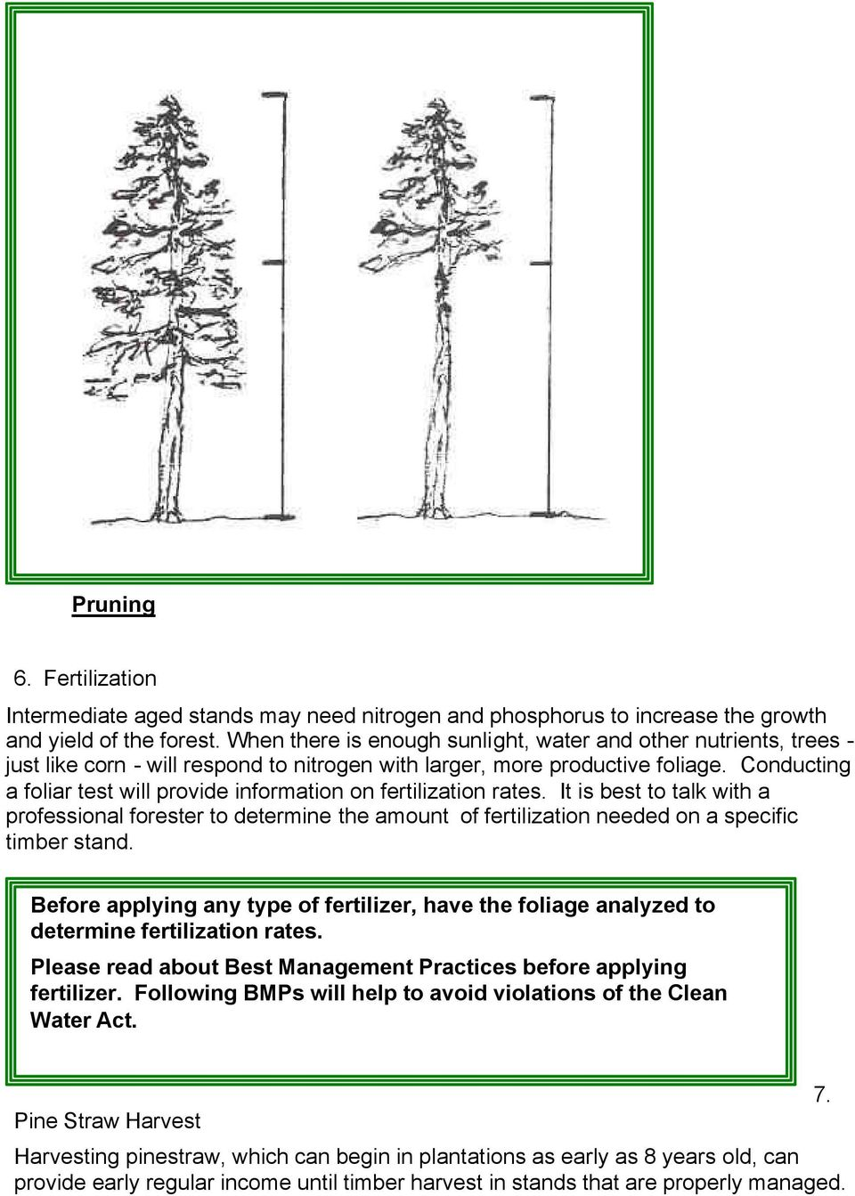 Conducting a foliar test will provide information on fertilization rates. It is best to talk with a professional forester to determine the amount of fertilization needed on a specific timber stand.