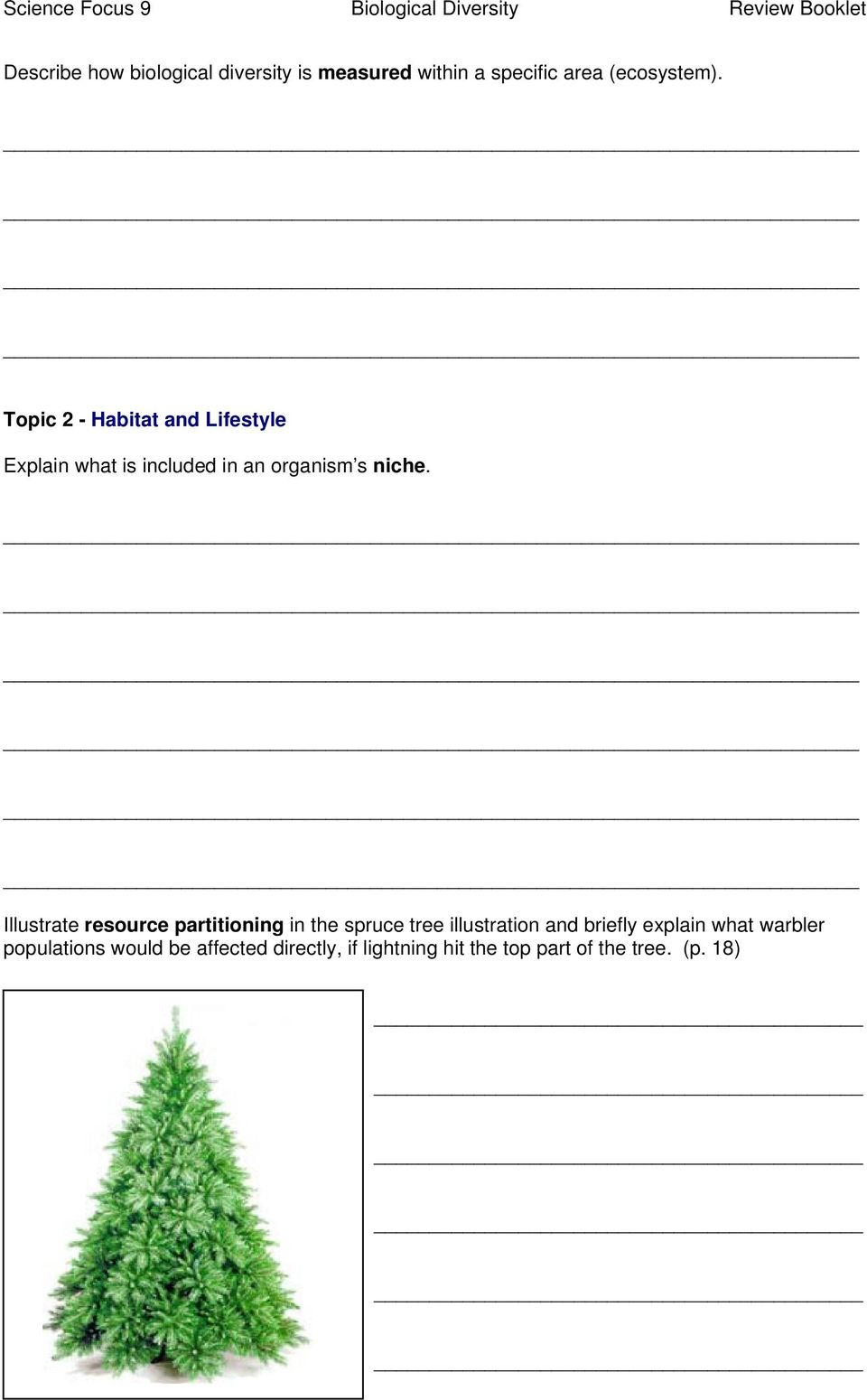 Illustrate resource partitioning in the spruce tree illustration and briefly explain