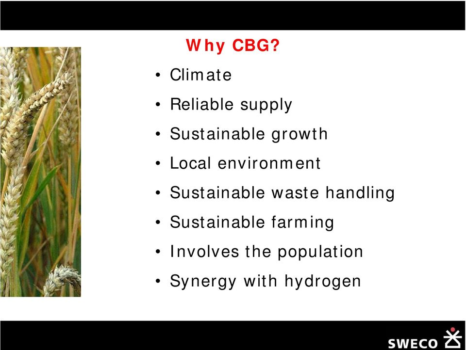 growth Local environment Sustainable