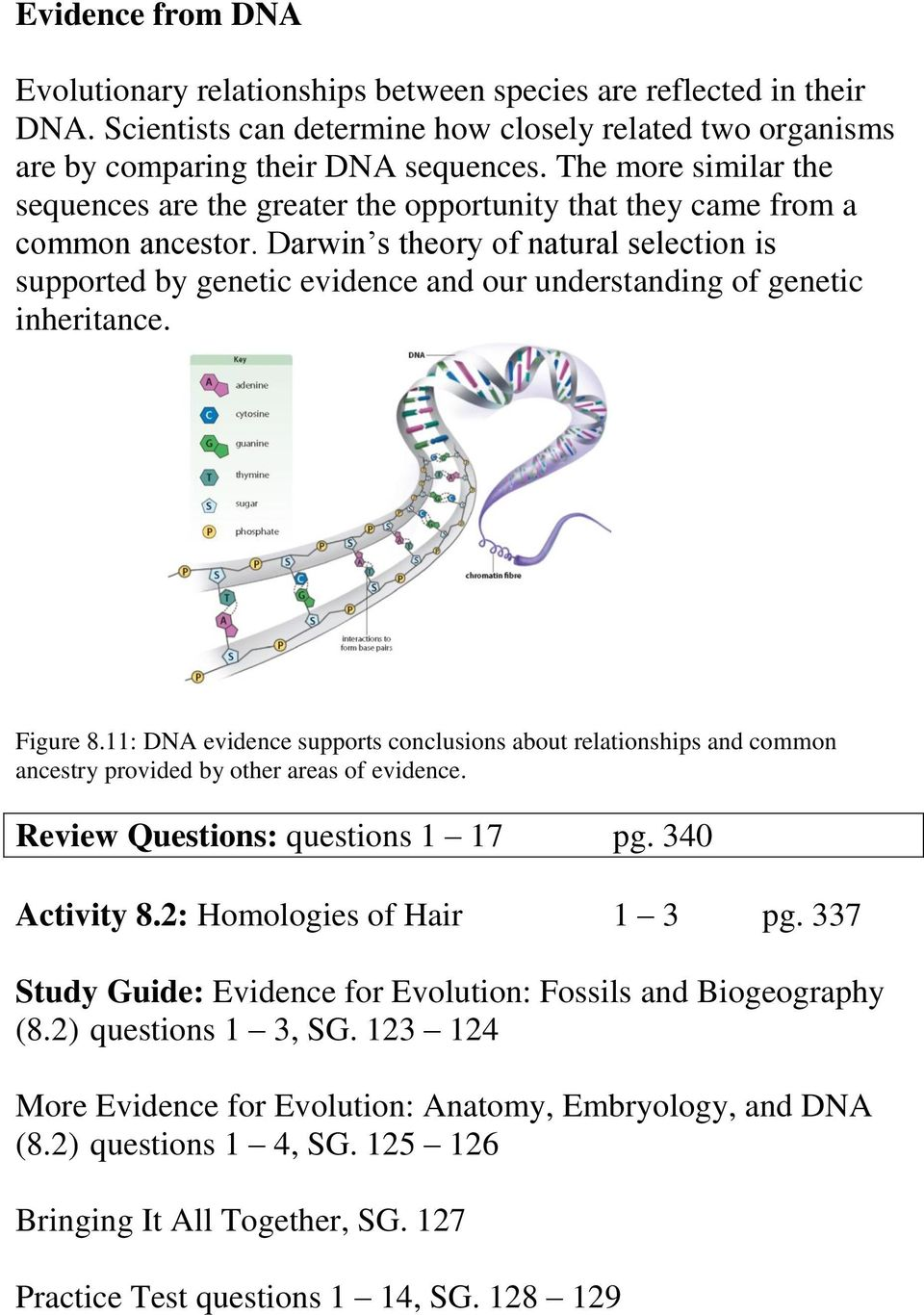 Darwin s theory of natural selection is supported by genetic evidence and our understanding of genetic inheritance. Figure 8.